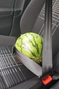 Melone 3 Punkt Gurt
